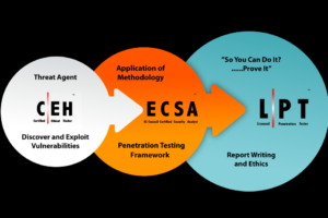 Review: EC-Council's Licensed Penetration Tester (Master) Exam 2.0: The World's First Proctored, Hands-On Pentesting Examination